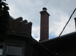 Jarvis St Chimney Completed